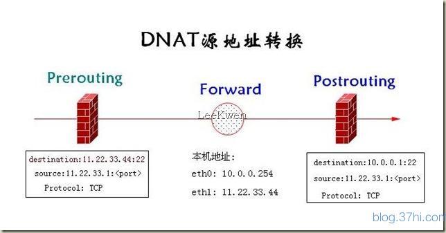 DNAT.jpg