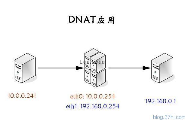 DNAT_1.jpg